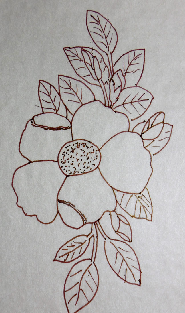 Cherokee Rose Relief Woodcarving Pattern By Clarence Born